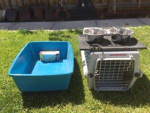 Cat Care Accessories