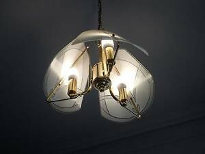 Italian glass ceiling lights, set of 4 Strathfield Strathfield Area Preview