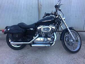 Harley Davidson 1200 Sportster Mount Torrens Adelaide Hills Preview