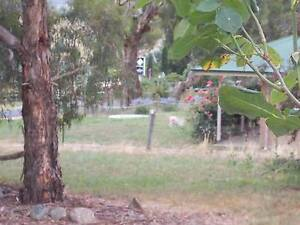 TARANA HOLIDAY HOME Lithgow Area Preview
