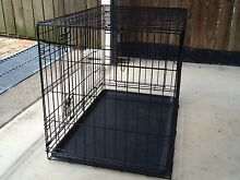 Dog Puppy crate Camp Hill Brisbane South East Preview