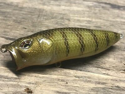 "Xmarks Custom Painted Topwater Pop Max Replica Yellow Perch 3 1/4"" 1/2oz"