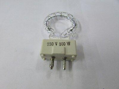 Roundlux 300 Watt 240 Volt Lamp