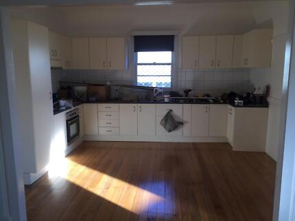 Newly Renovated Three Bedroom plus Office