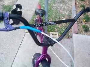 Colony bike Browns Plains Logan Area Preview