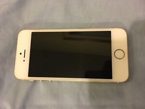 iPhone 5s (White/silver)