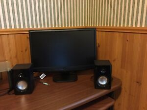 Monitor and speakers