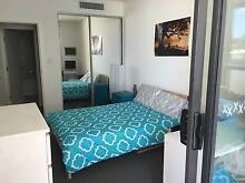 FURNISHED DOUBLE BEDROOM FOR COUPLE Arncliffe Wolli Creek Arncliffe Rockdale Area Preview