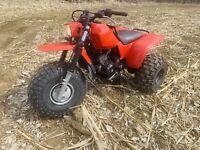 Honda 250sx Trike For Sale