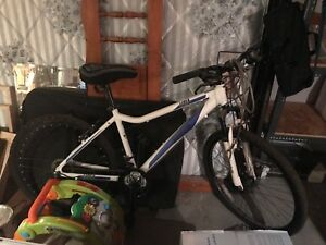 "17"" inch mountain bike"