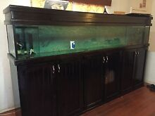 10 ft long tank with sump setup Broadmeadows Hume Area Preview