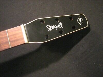 Seagull Acoustic Guitar Neck - new guitar removal --- Godin --