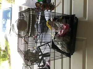Birdcage mainly for finch or budgies
