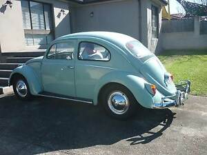 Volkswagen Kombi or beetle or kharman ghia wanted Riverstone Blacktown Area Preview