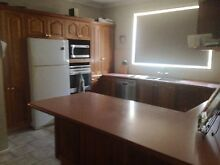 Timber kitchen East Corrimal Wollongong Area Preview