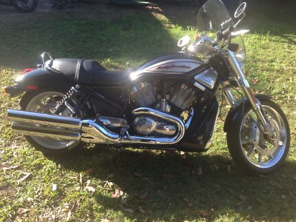 Harley vrod sell/swap Wavell Heights Brisbane North East Preview
