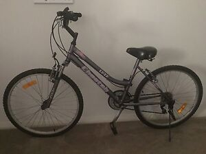 Selling my beloved Cruiser bike Lane Cove North Lane Cove Area Preview