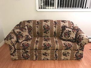 3 seater pull out couch & 2 pillows