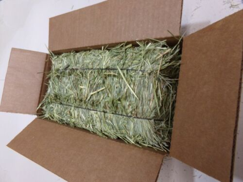 Great Timothy Hay For Rabbits And All Small Pets You Get 1 Bale=3 lbs.