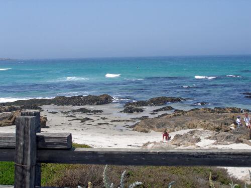 Carmel Monterey Santa Cruz Digital Photos 300 Pictures!