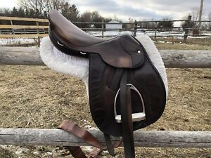 "Bentley 16.5"" English Saddle"