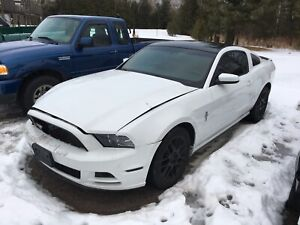 LOOKING FOR 2013-14 MUSTANG HOOD,BUMP COVER ETC