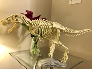 3D printed T-Rex model skeleton