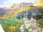Colorado Sage Antiques & More