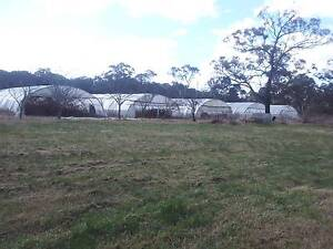 Greenhouses on Acreage with Lots of Potential Liverpool Liverpool Area Preview
