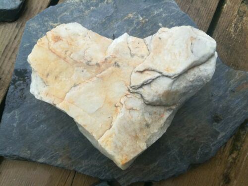 Large Naturally Formed Heart Shaped Beach Rock Stone Alaska white