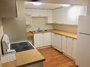 Large 1 Bedroom Basement Apartment