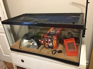 Large bearded dragon set up