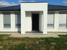 ROLLER SHUTTERS- $ *WHOLESALE PRICES* $ Adelaide Region Preview