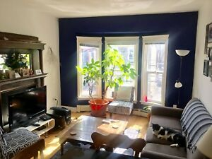 Room available in 3-bedroom Agricola St. apt