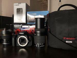 Canon EOS Rebel T5i + 2 objectifs