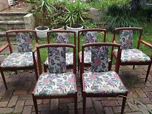 Parker mid century modern dining chairs and carvers x 6 Narraweena Manly Area Preview