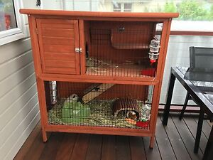 2 x female Guinea pigs + hutch & accessories Mount Colah Hornsby Area Preview
