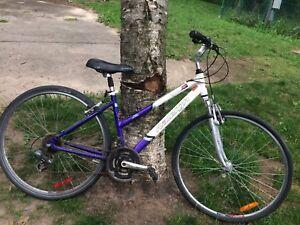 Raleigh Bike!