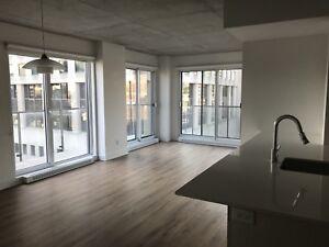 Beautiful 2 bedroom apartment steps away from Berri-UQAM