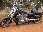 Harley Davidson V Rod Muscle York York Area Preview