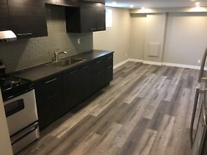 Brand New Spacious 2 bedroom basement apartment for rent