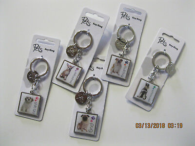 Silver Photo Key Tag - METAL Key Chain with Dog Breed picture & Paw Print Charm, 4