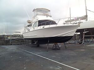 Ex cray convert to Bertram 38ft powerboat for sale Spearwood Cockburn Area Preview
