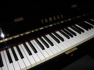 MUSIC LESSONS PIANO KEYBOARD CLARINET GUITAR ACCOMPANIMENT Strathpine Pine Rivers Area Preview