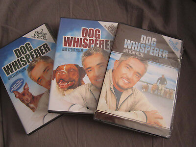 3 NEW DOG WHISPERER WITH CESAR MILLAN DVD SETS CESAR'S WAY 3&3&5 EPISODES NUNU
