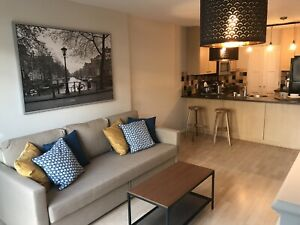 Vancouver Downtown Stylish Furnished  Large 1BR Condo