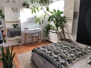 Summer sublet with private bathroom and private entrance