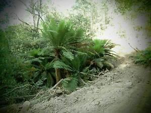 34 Acres Land Near Colebrook , richmond Hobart, Tasmania. Colebrook Southern Midlands Preview