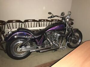 2003 Harley Davidson Purple