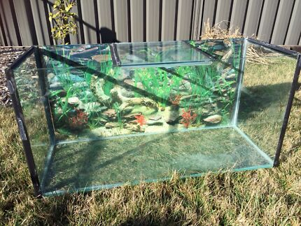Fish Tank and Filter Googong Queanbeyan Area Preview